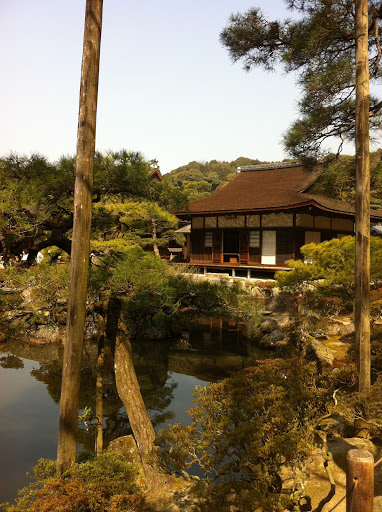 My Japan Adventure